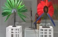 Isabelle de Borchgrave in den Farben Brasiliens