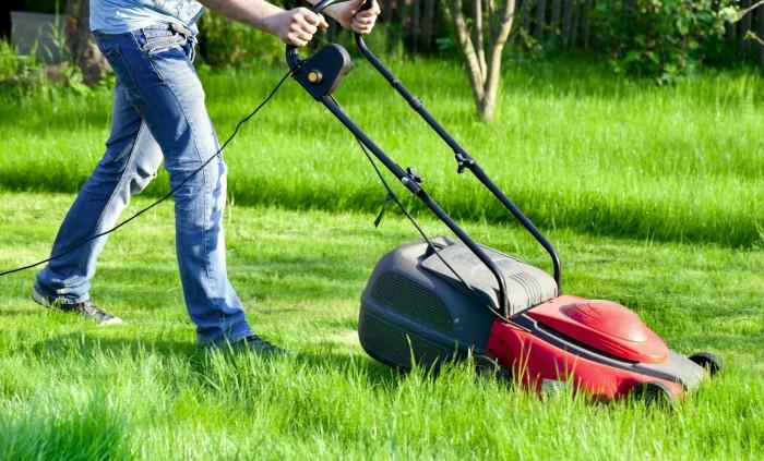 Es grünt so grün….und wer mäht den Rasen ?
