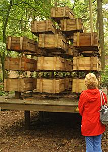 Neerpelt – hier klingt der Wald ganz anders