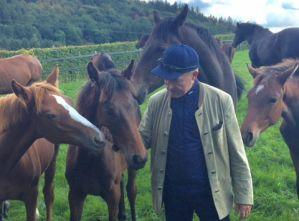 Pferdebegeisterung