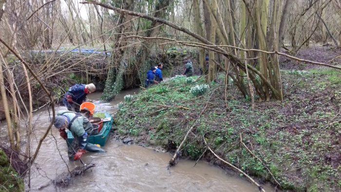 Flussentmüllung in Wallonien