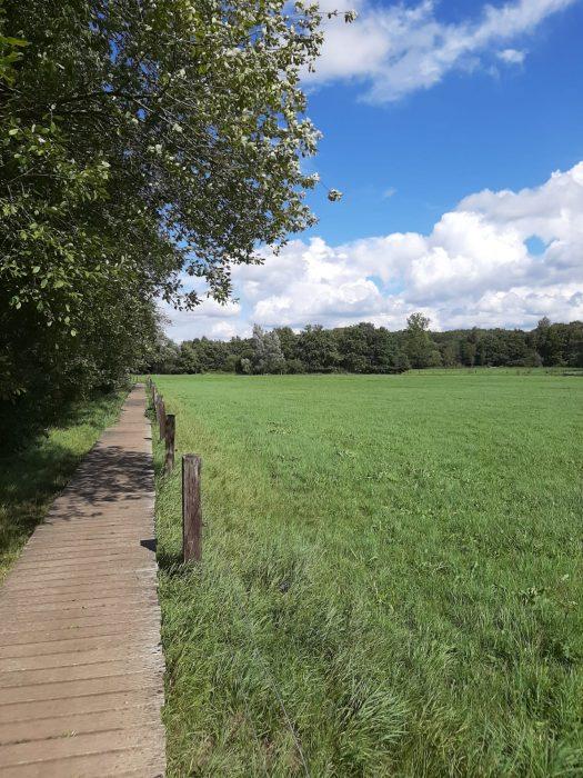 Wanderungen durch die Mark Brabant (3)